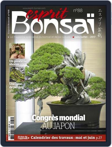 Esprit Bonsai (Digital) June 1st, 2017 Issue Cover