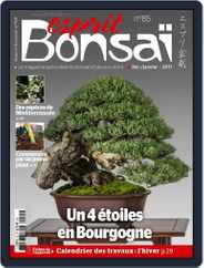 Esprit Bonsai (Digital) Subscription December 1st, 2016 Issue