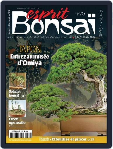 Esprit Bonsai (Digital) May 31st, 2014 Issue Cover