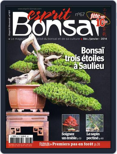 Esprit Bonsai (Digital) November 19th, 2013 Issue Cover