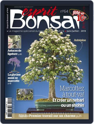 Esprit Bonsai (Digital) May 21st, 2013 Issue Cover
