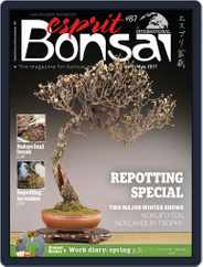 Esprit Bonsai International (Digital) Subscription March 24th, 2017 Issue