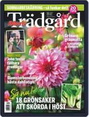 Allers Trädgård (Digital) Subscription August 1st, 2020 Issue