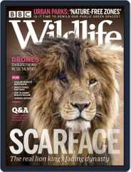 Bbc Wildlife (Digital) Subscription August 1st, 2020 Issue