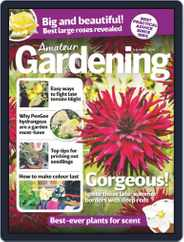 Amateur Gardening (Digital) Subscription August 8th, 2020 Issue