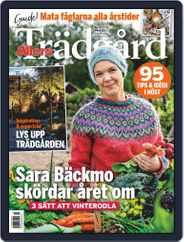 Allers Trädgård (Digital) Subscription October 1st, 2020 Issue