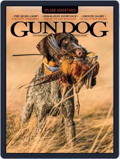 Gun Dog (Digital) November 1st, 2020 Issue Cover