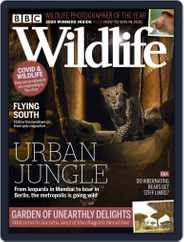 Bbc Wildlife (Digital) Subscription November 1st, 2020 Issue