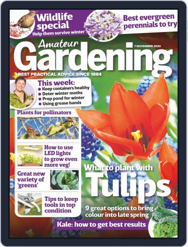 Amateur Gardening (Digital) November 7th, 2020 Issue Cover