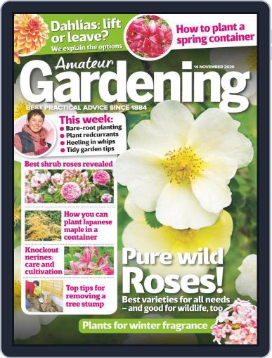 Amateur Gardening November 14th, 2020 Digital Back Issue Cover