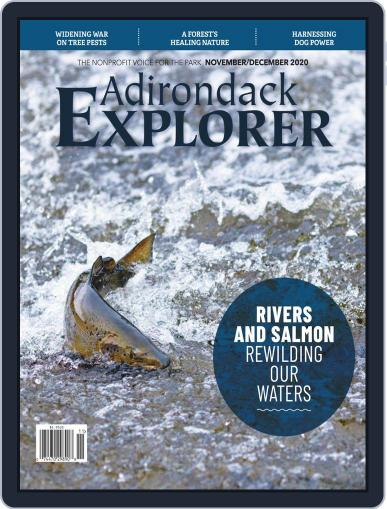 Adirondack Explorer (Digital) November 1st, 2020 Issue Cover
