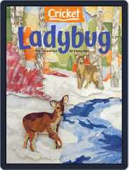 Ladybug Stories, Poems, And Songs Magazine For Young Kids And Children (Digital) Subscription November 1st, 2020 Issue