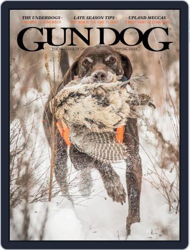 Gun Dog December 1st, 2020 Digital Back Issue Cover