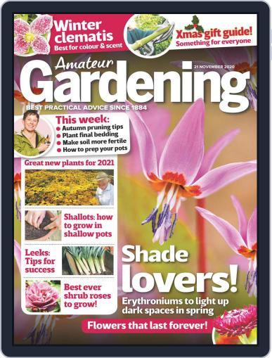 Amateur Gardening (Digital) November 21st, 2020 Issue Cover