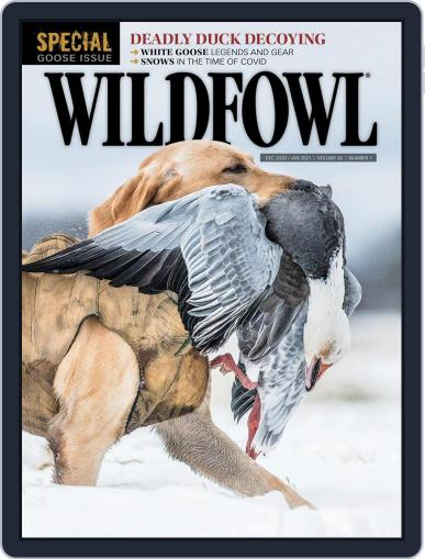Wildfowl December 1st, 2020 Digital Back Issue Cover