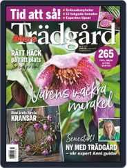 Allers Trädgård (Digital) Subscription February 1st, 2021 Issue