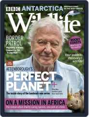 Bbc Wildlife (Digital) Subscription February 1st, 2021 Issue