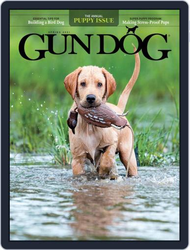 Gun Dog (Digital) April 1st, 2021 Issue Cover