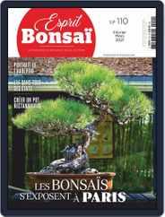 Esprit Bonsai (Digital) Subscription February 1st, 2021 Issue