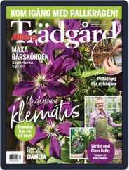 Allers Trädgård (Digital) Subscription April 1st, 2021 Issue