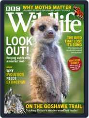 Bbc Wildlife (Digital) Subscription July 1st, 2021 Issue