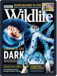 Bbc Wildlife Magazine (Digital) Subscription September 1st, 2020 Issue