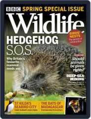 Bbc Wildlife Magazine (Digital) Subscription April 2nd, 2021 Issue