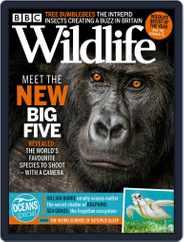 Bbc Wildlife Magazine (Digital) Subscription June 1st, 2021 Issue