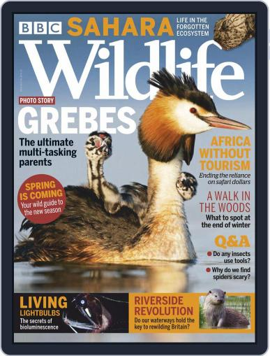 Bbc Wildlife Magazine (Digital) March 1st, 2021 Issue Cover