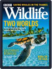 Bbc Wildlife Magazine (Digital) Subscription October 1st, 2021 Issue