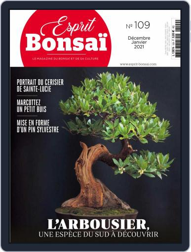 Esprit Bonsai Magazine (Digital) December 1st, 2020 Issue Cover