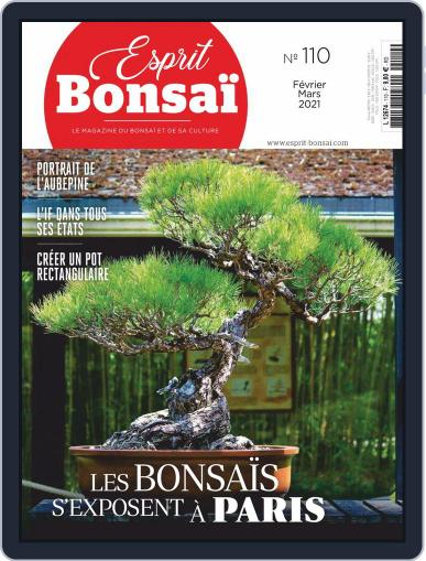Esprit Bonsai Magazine (Digital) February 1st, 2021 Issue Cover