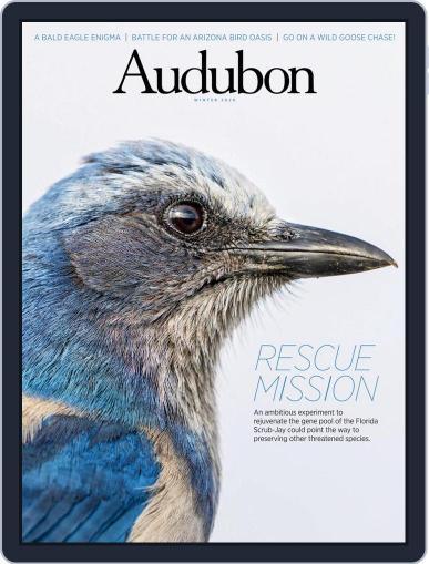Audubon Magazine (Digital) December 8th, 2020 Issue Cover