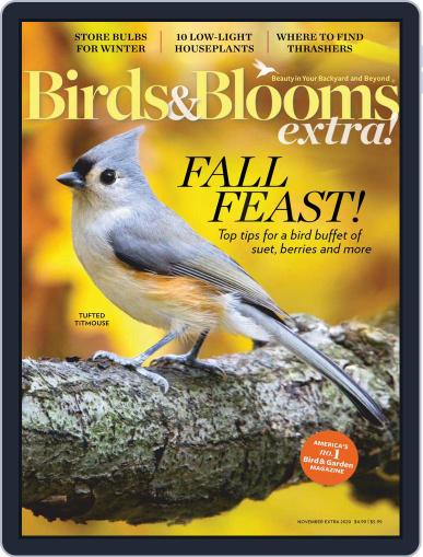 Birds and Blooms Extra Magazine (Digital) November 1st, 2020 Issue Cover