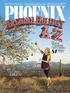 Phoenix Subscription
