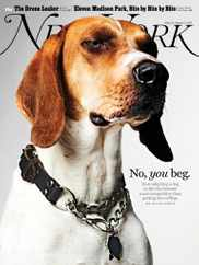 New York Magazine Subscription July 19th, 2021 Issue