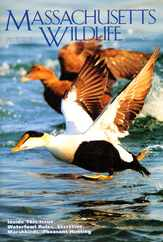 Massachusetts Wildlife Magazine Subscription
